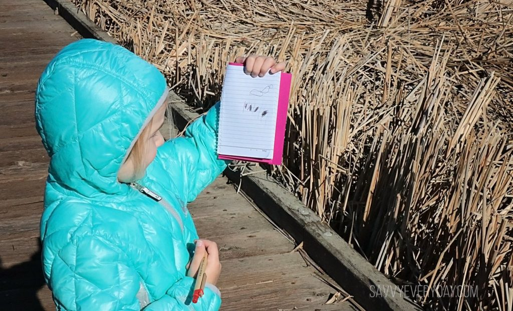 explorers notes