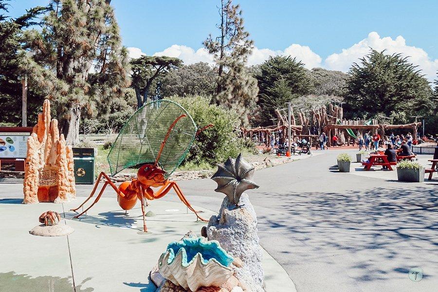 SF Zoo playground