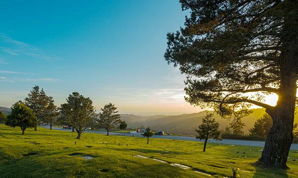 Skylawn Memorial park view